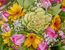 Ποικιλία της ζωηρόχρωμης κινηματογράφησης σε πρώτο πλάνο λουλουδιών Στοκ Εικόνα