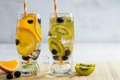 Ποικιλία της κρύας λεμονάδας με τα φρούτα και τα μούρα Στοκ εικόνες με δικαίωμα ελεύθερης χρήσης