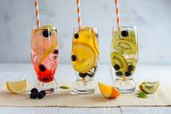 Ποικιλία της κρύας λεμονάδας με τα φρούτα και τα μούρα Στοκ Εικόνες