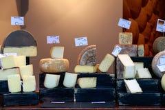 Ποικιλία του τυριού στην επίδειξη στην αγορά δήμων Στοκ φωτογραφία με δικαίωμα ελεύθερης χρήσης