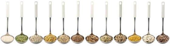 Ποικιλία των ακατέργαστων οσπρίων και των ρυζιών στις κουτάλες - άσπρο υπόβαθρο Στοκ Φωτογραφία