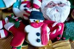 Ποικιλία των ζωηρόχρωμων μπισκότων Χριστουγέννων Στοκ εικόνες με δικαίωμα ελεύθερης χρήσης