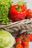 Ποικιλία των πράσινων και κόκκινων φρέσκων φύλλων σαλάτας μαρουλιού, κόκκινη πάπρικα Στοκ Φωτογραφίες