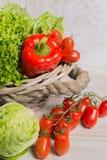 Ποικιλία των πράσινων και κόκκινων φρέσκων φύλλων σαλάτας μαρουλιού, κόκκινη πάπρικα Στοκ φωτογραφία με δικαίωμα ελεύθερης χρήσης