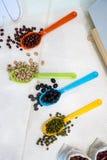 Ποικιλία των φασολιών στο ζωηρόχρωμο κουτάλι Στοκ Φωτογραφίες