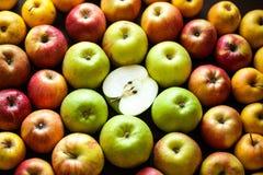 Ποικιλία των φρέσκων ζωηρόχρωμων μήλων Στοκ φωτογραφίες με δικαίωμα ελεύθερης χρήσης