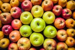 Ποικιλία των φρέσκων ζωηρόχρωμων μήλων Στοκ Εικόνες