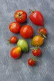 Ποικιλία των φρούτων ντοματών πέρα από το χρωματισμένο υφαντικό υπόβαθρο Στοκ Εικόνα