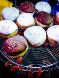 Ποικιλία Cupcakes Στοκ φωτογραφία με δικαίωμα ελεύθερης χρήσης