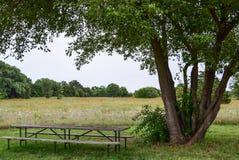 Ποιμενική σκηνή στο πάρκο κομητειών Sedgwick κοντά στον αραβόσιτο, Κάνσας Στοκ Φωτογραφία