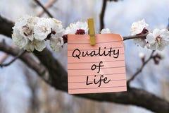 Ποιότητα ζωής στο υπόμνημα στοκ εικόνες