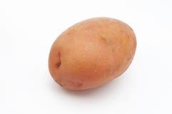 Ποιότητα των πατατών Αρόζα η ανασκόπηση απομόνωσε το λευκό Στοκ εικόνα με δικαίωμα ελεύθερης χρήσης