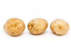 Ποιότητα των πατατών Κρόνος Απομονωμένος στο άσπρο backgroun Στοκ Φωτογραφίες