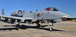 Πολεμική Αεροπορία α-10 Warthog/κεραυνός ΙΙ Στοκ φωτογραφία με δικαίωμα ελεύθερης χρήσης