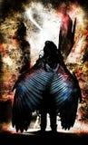 πολεμιστής φτερωτός Στοκ Εικόνες
