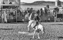 ΠΟΛΗ ΦΑΡΑΓΓΙΩΝ ΤΟΥ BRYCE - 21 ΙΟΥΝΊΟΥ 2018: Οι κάουμποϋ οδηγούν τα άλογά τους Στοκ φωτογραφίες με δικαίωμα ελεύθερης χρήσης