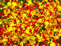 Πολλά ζωηρόχρωμα φύλλα φθινοπώρου στοκ φωτογραφία με δικαίωμα ελεύθερης χρήσης