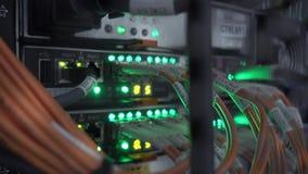 Πολλά καλώδια στο ράφι κεντρικών υπολογιστών Το βίντεο περιέχει το τρεμούλιασμα φιλμ μικρού μήκους