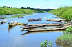πολλά κανό στον ποταμό της Αμαζώνας στοκ φωτογραφίες