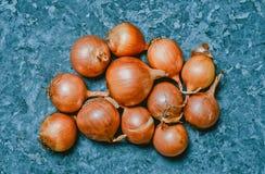 Πολλά κρεμμύδια σε μια γκρίζα συγκεκριμένη επιφάνεια χρήσιμα λαχανικά στοκ εικόνα