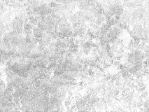 Πολλά κόκκινα μικρά μούρα σε έναν κλάδο με τα φύλλα ενάντια στο μπλε ουρανό στοκ φωτογραφία με δικαίωμα ελεύθερης χρήσης