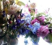 Πολλά μπλε ίριδες, aquilegia, ρόδινα και άσπρα peonies στο παράθυρο στο φως πρωινού Στοκ Εικόνα