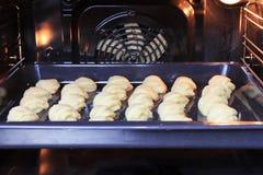 Πολλά σπιτικά μπισκότα που βρίσκονται στο φύλλο ψησίματος στο φούρνο στοκ εικόνες