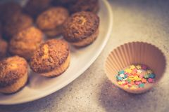 Πολλά σπιτικά muffins που που βρίσκονται σε ένα πιάτο έτοιμο για τη διακόσμησή τους για ιερό Πάσχα ή έναν άλλο εορτασμό Στοκ φωτογραφία με δικαίωμα ελεύθερης χρήσης