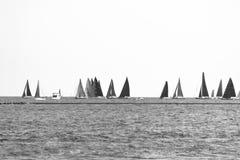 Πολλά sailboats που πλέουν σε μια λίμνη του Μίτσιγκαν Στοκ εικόνες με δικαίωμα ελεύθερης χρήσης