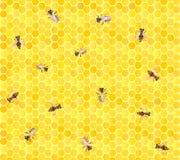 Πολλές μέλισσες στην κηρήθρα, άνευ ραφής ανασκόπηση. Στοκ Φωτογραφίες