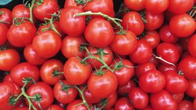 Πολλές τέλειες ντομάτες στη φυτική αγορά χρονοτριβούν απόθεμα βίντεο