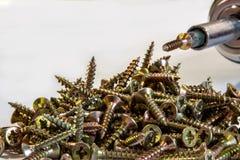 Πολλές χρωματισμένες ορείχαλκος ξύλινες βίδες στοκ φωτογραφία