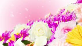 Πολλή ζωηρόχρωμη ζωτικότητα βρόχων λουλουδιών Λουλούδια χρώματος ουράνιων τόξων Κήπος που γεμίζουν με τα πολύχρωμα λουλούδια απόθεμα βίντεο