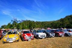 Πολλή κλασική στάθμευση του Ώστιν Mini Cooper στον τομέα χλόης thre στοκ φωτογραφία
