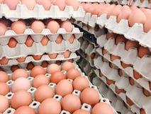 Πολλή φρέσκια επιτροπή αυγών συσσώρευσε στα στρώματα στοκ εικόνα με δικαίωμα ελεύθερης χρήσης