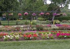 Πολλαπλάσια κρεβάτια λουλουδιών στο δενδρολογικό κήπο του Ντάλλας Στοκ εικόνα με δικαίωμα ελεύθερης χρήσης