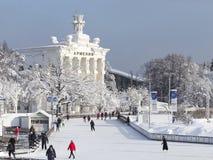 Πολλοί άνθρωποι κάνουν πατινάζ στη Μόσχα, Ρωσία Στοκ Εικόνες