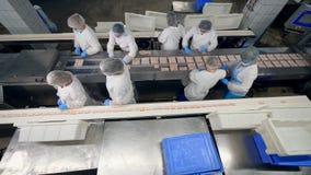 Πολλοί εργαζόμενοι εγκαταστάσεων συσκευάζουν τα τρόφιμα στα πλαστικά εμπορευματοκιβώτια σε μια δυνατότητα φιλμ μικρού μήκους