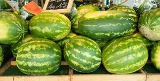 Πολλοί που συσσωρεύουν τα καρπούζια στην πώληση σε μια αγορά Juicy φρέσκα θερινά φρούτα στοκ εικόνα