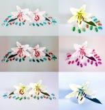 Πολλοί όμορφοι κρίνοι χωρίς υπόβαθρο, κρίνοι λουλουδιών που απομονώνονται στους μεγάλους αριθμούς Στοκ φωτογραφία με δικαίωμα ελεύθερης χρήσης