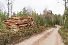 Πολτός ξύλου από την άκρη του δρόμου χωρών στοκ φωτογραφία με δικαίωμα ελεύθερης χρήσης