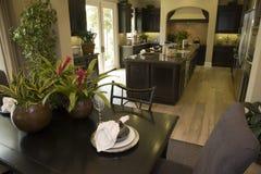 πολυτέλεια βασικών κουζινών Στοκ Εικόνες