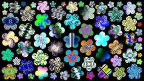 Πολυτελές σύνολο όμορφων, φωτεινών, ζωηρόχρωμων λουλουδιών για το σχέδιό σας Στοκ φωτογραφία με δικαίωμα ελεύθερης χρήσης