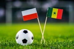 Πολωνία - Σενεγάλη, ομάδα Χ, Τρίτη, 19 Ποδόσφαιρο Ιουνίου, Παγκόσμιο Κύπελλο, Ρωσία 2018, εθνικές σημαίες στην πράσινη χλόη, άσπρ στοκ εικόνες