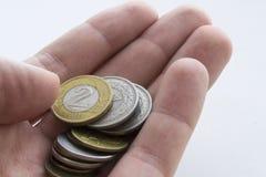Πολωνικά zloty νομίσματα στο χέρι ατόμων στο άσπρο υπόβαθρο απομονωμένος στοκ εικόνες με δικαίωμα ελεύθερης χρήσης