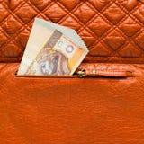 Πολωνικά zloty χρήματα στο πορτοφόλι Στοκ Φωτογραφίες