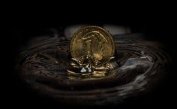 1 πολωνική πτώση σεντ στο ράντισμα νερού Στοκ φωτογραφία με δικαίωμα ελεύθερης χρήσης