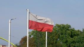 Πολωνική σημαία που κυματίζει αργά απόθεμα βίντεο