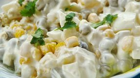 Πολωνική φυτική σαλάτα στοκ εικόνες