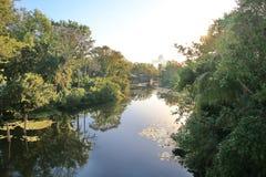 Πολύβλαστα πράσινα δέντρα που απεικονίζονται στο τέλεια ήρεμο νερό στοκ φωτογραφία με δικαίωμα ελεύθερης χρήσης